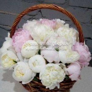 """Корзина """"White Marshmallow"""" (29 пионов, Италия)"""